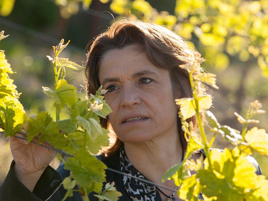 Francoise vana Antech Domaine in de Limoux