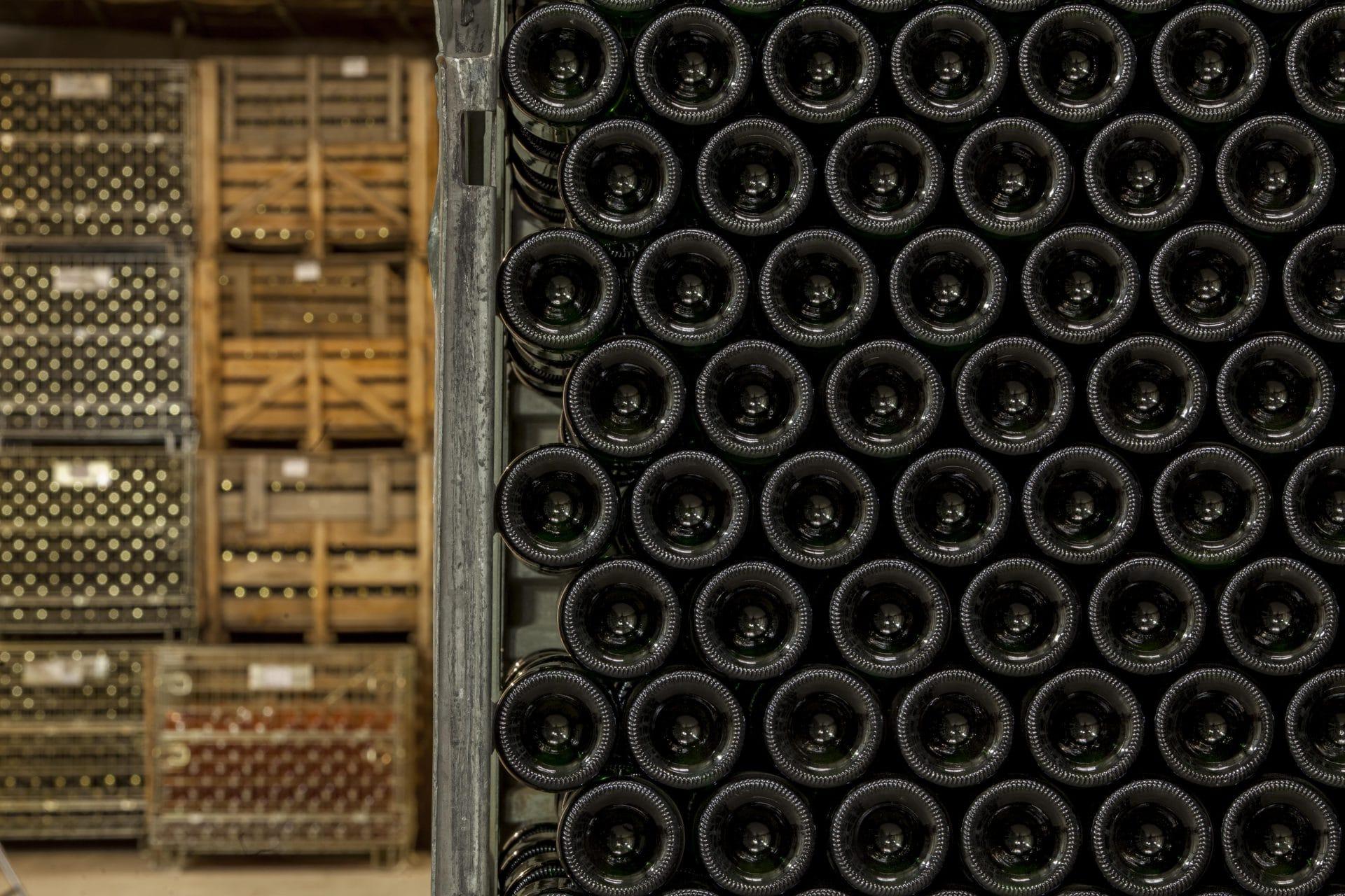 Wijnkelder van Domaine Antech In de Limoux