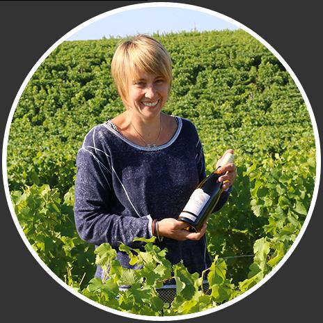Wijnoogst in Frankrijk bij Domaine Bigonneau