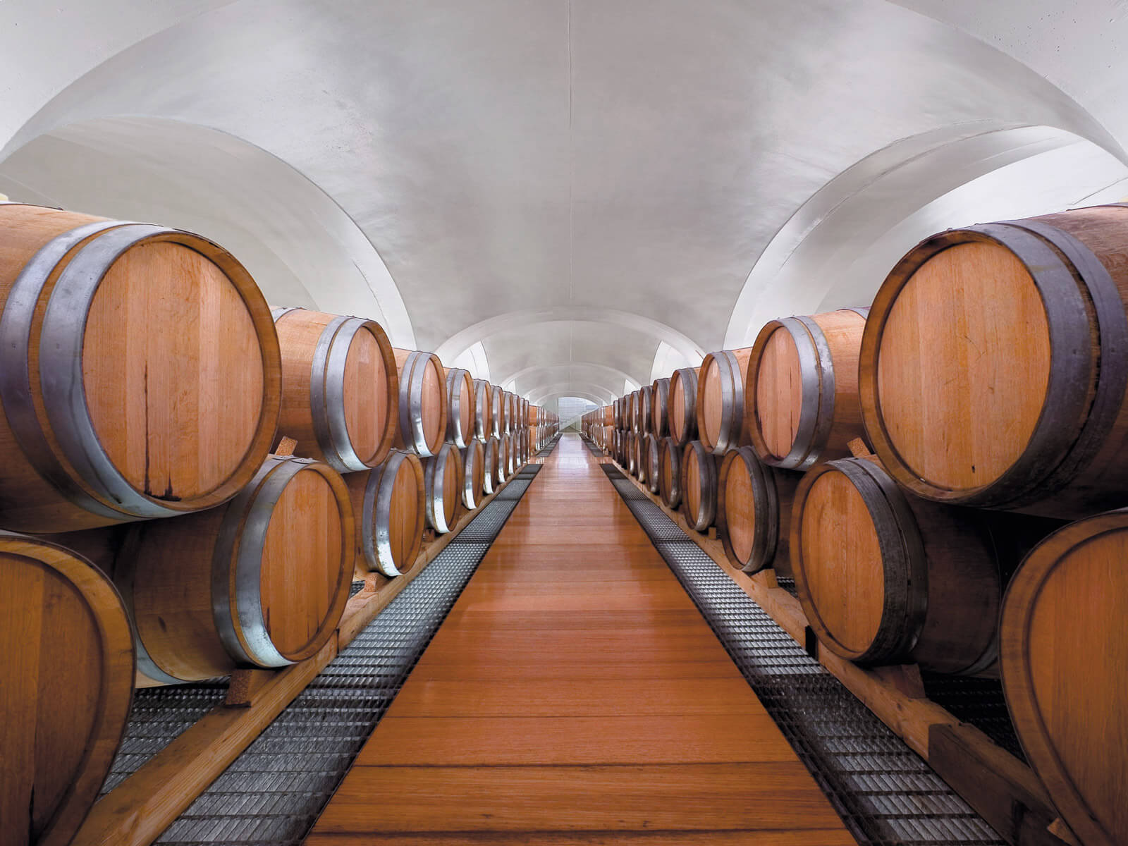 Feudi Kelder wijnvaten