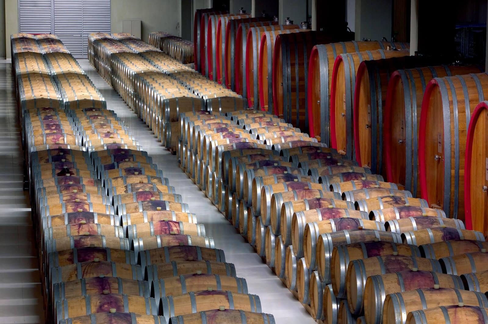 Feudi wijnen in Campania Italie