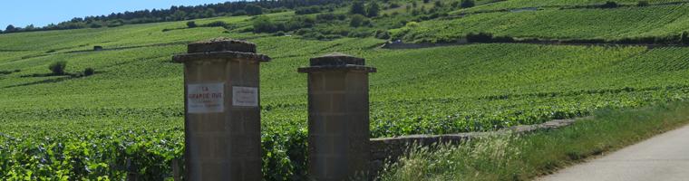 Frankrijk Bourgogne