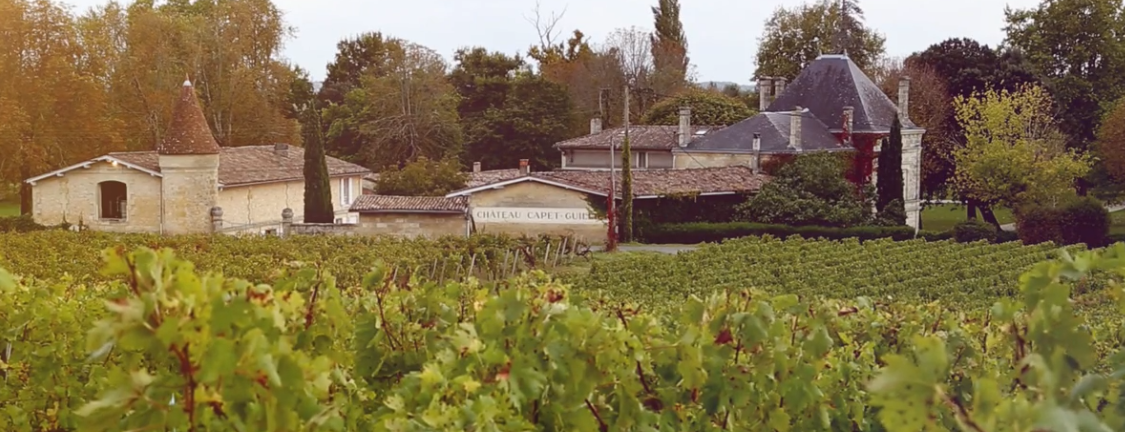 Chateau Tour de Capet produceert 70.000 flessen wijn per jaar in Saint Emillion