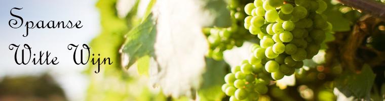 Spanje produceert veel witte wijnen eigenlijk meer dan rode wijnen je zou dat niet zo denken zo gouw, maar het grootste deel wordt gebruikt om brandy te maken, en natuurlijk voor de Cava er blijven nog genoeg verschillende witte wijnen over met hun eigen karakter om op ontdekking te gaan
