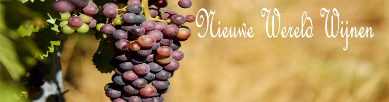 Europa heeft al een eeuwen oude traditie in wijn maken, pas later zijn andere landen op de markt gekomen met uitstekende wijnen omdat dit later is noemen wij deze landen, de nieuwe wereld van wijnen