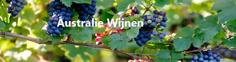 Wijnen uit Australie