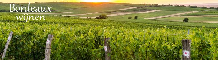 Bordeaux wat vroeger de belangrijkste wijnhaven was van Frankrijk ligt aan de Garonne, Dordogne en Gironde het totale wijngebied in de bordeaux beslaat meer dan 100.000 hectare en is bijna volledig AOC geklasseerd met bekende namen als  Libourne (Saint Emilion), Medoc, Entre-Deux-Mers, Graves