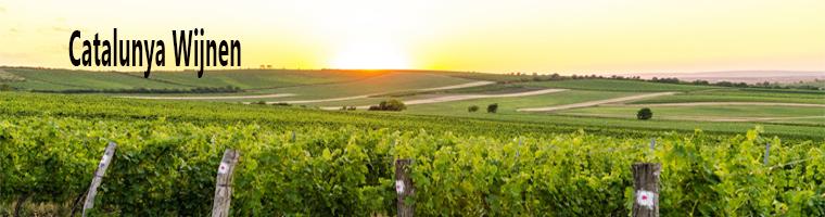 Catalunya wijngebied (Catalonie)