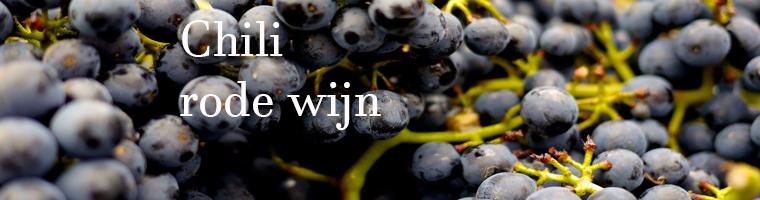 Rode wijnen uit Chili