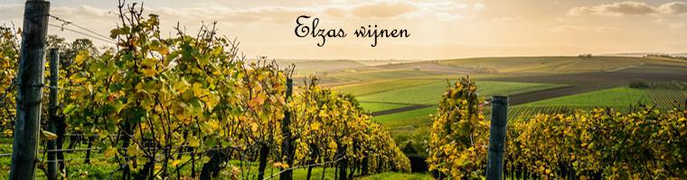 Elzas wijnen uit Frankrijk