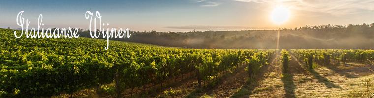 Italiaanse wijnen zijn bijzonder het klimaat verschil is heel verschillend waardoor er bijzondere klassieke bewaarwijnen vandaan komen als nieuwe wijnen, Italie zijn grootste wijngebieden zijn de Toscane, Sicilie, en Piemonte.