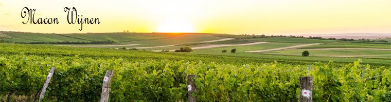 Macon wijnen Bourgogne