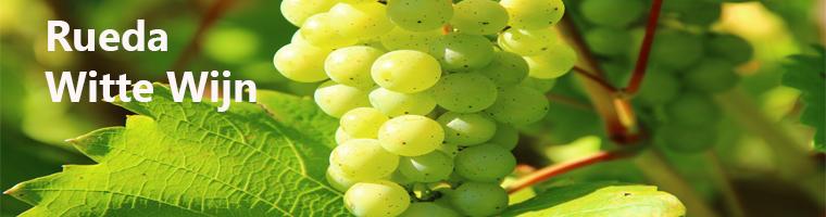 Spaanse Rueda wijngebied