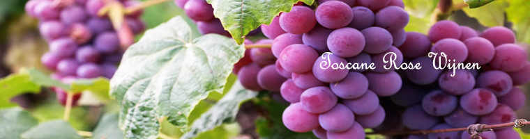 Toscaanse rose wijnen