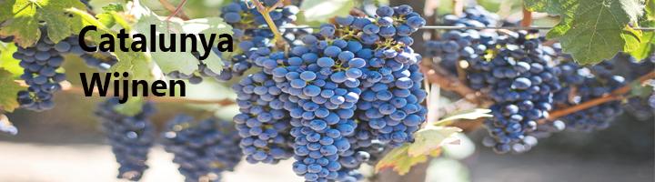 Catalunya Wijngebied