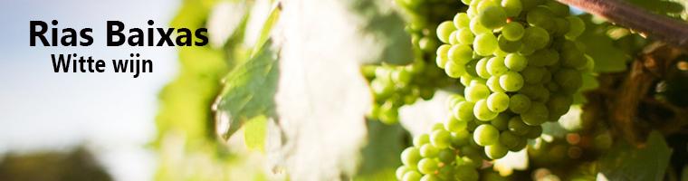 Rias Baixas Wijngebied in Spanje