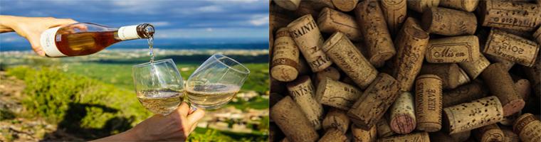 Italiaanse witte wijnen uit verschillende regio's in italie