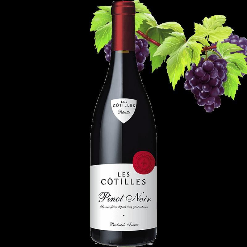 Les Cotilles Pinot Noir 7.99