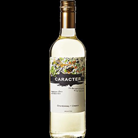 Bodega Santa Ana Caracter Chardonnay Chenin